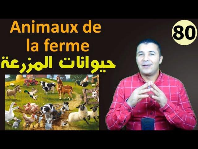 80 حيوانات المزرعة بالفرنسية وأماكن معيشتها Les animaux et leurs habitats
