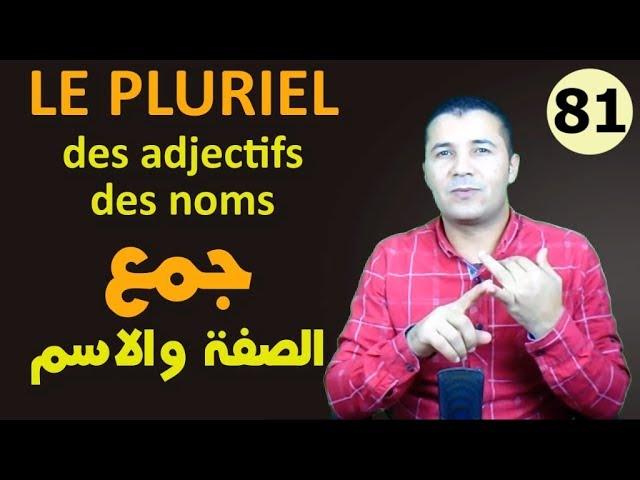 81 جمع الصفات والأسماء Pluriel des Adjectifs et des Noms