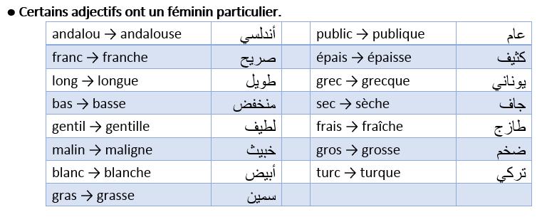 Certains adjectifs ont un féminin particulier