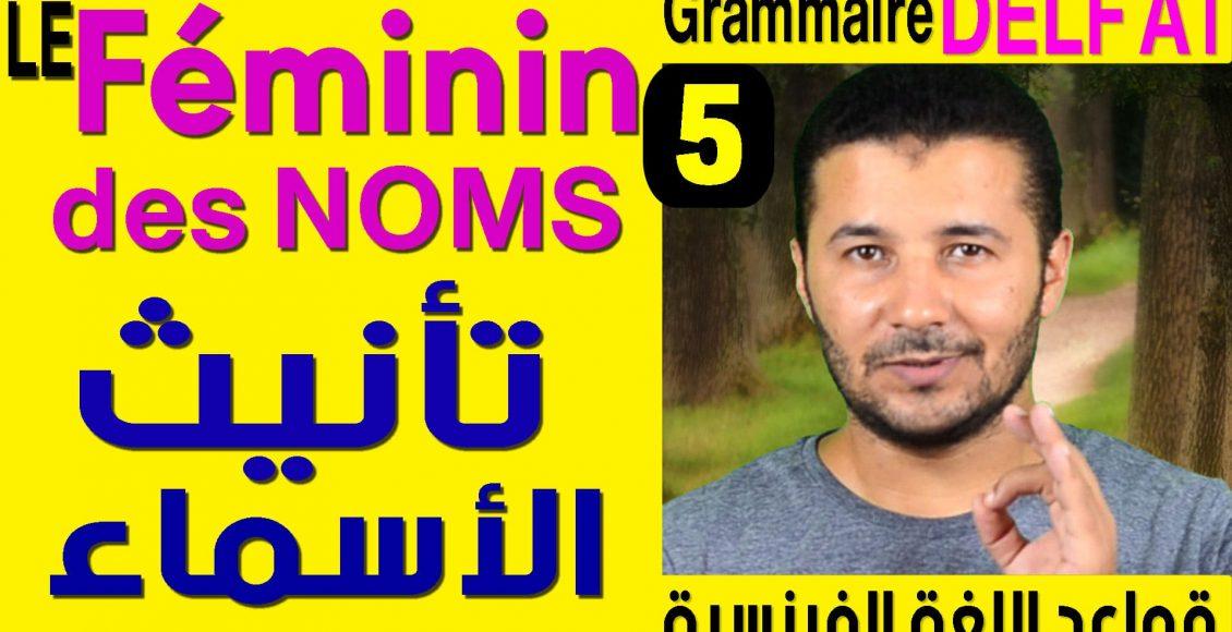 Grammaire Delf A1 le féminin des noms