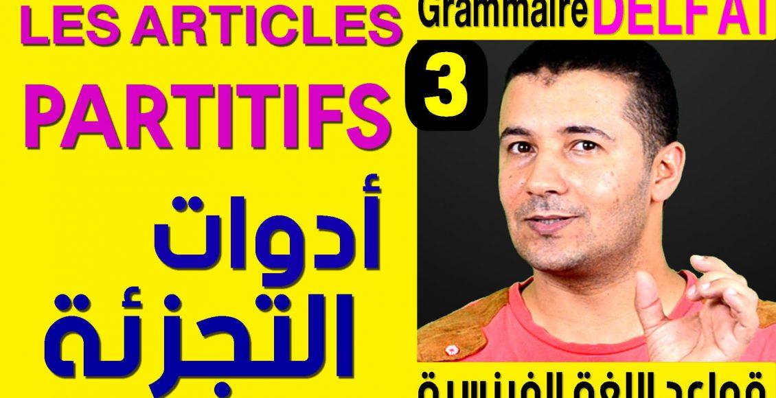 Grammaire Delf A1 les articles partitifs