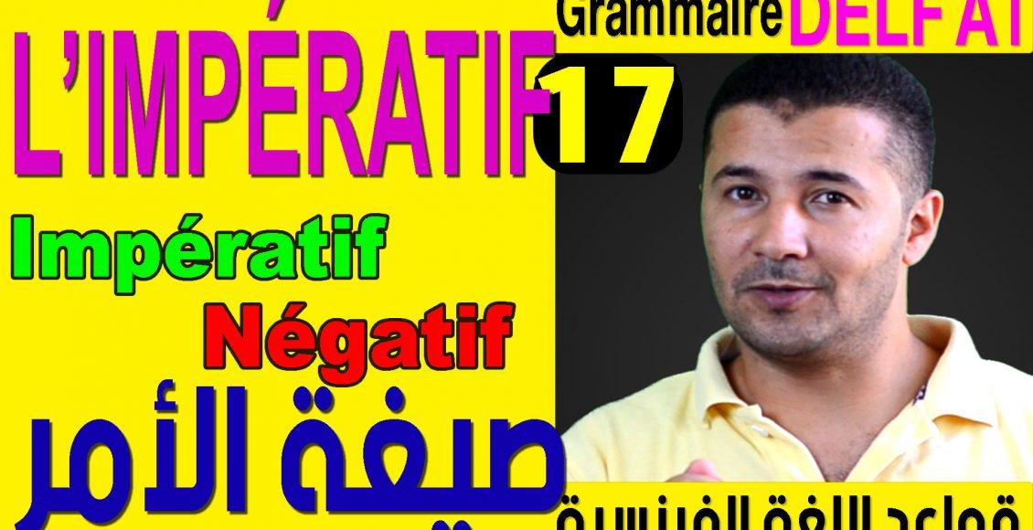 Grammaire-DELF-A1-cover