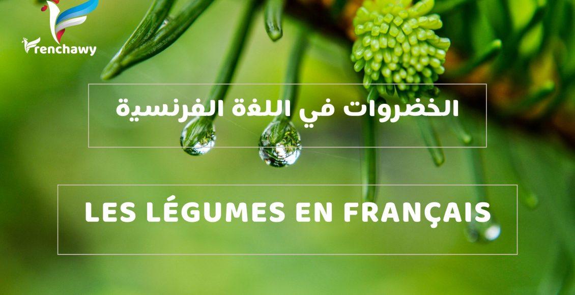 الخضروات في اللغة الفرنسية )